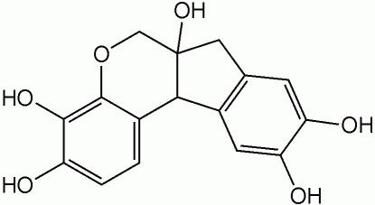 FONTE: https://pt.wikipedia.org/wiki/Hematoxilina