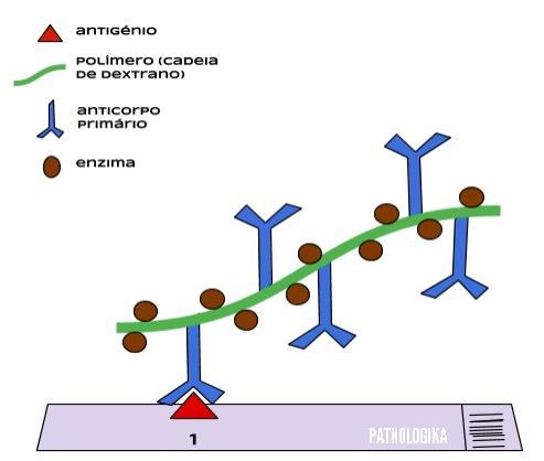 Figura I14. Método EPOS